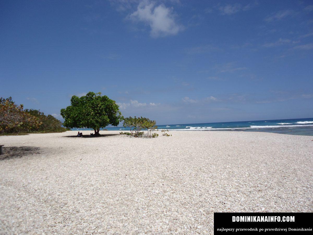 barahona plaże