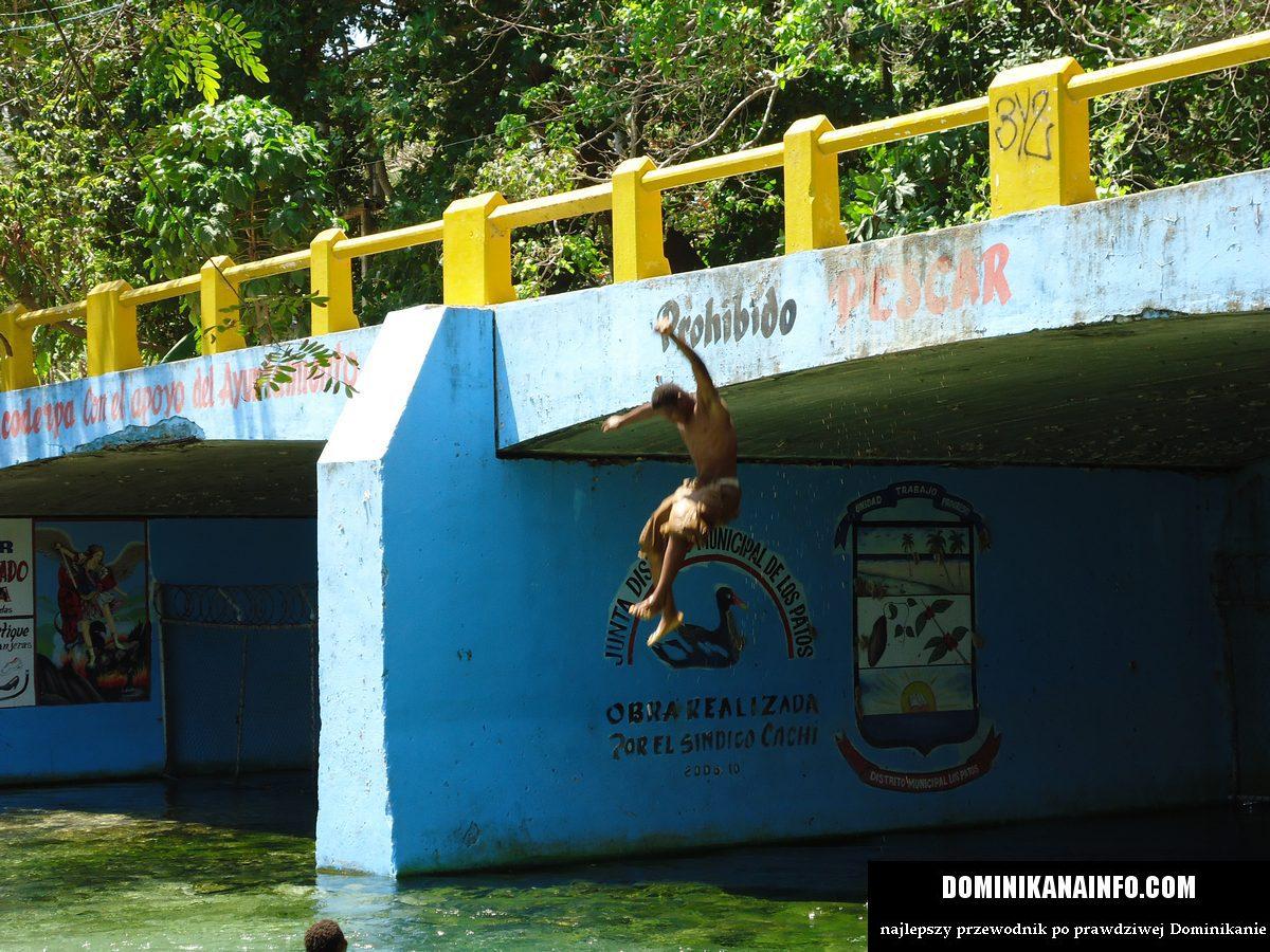 Dominikana basen