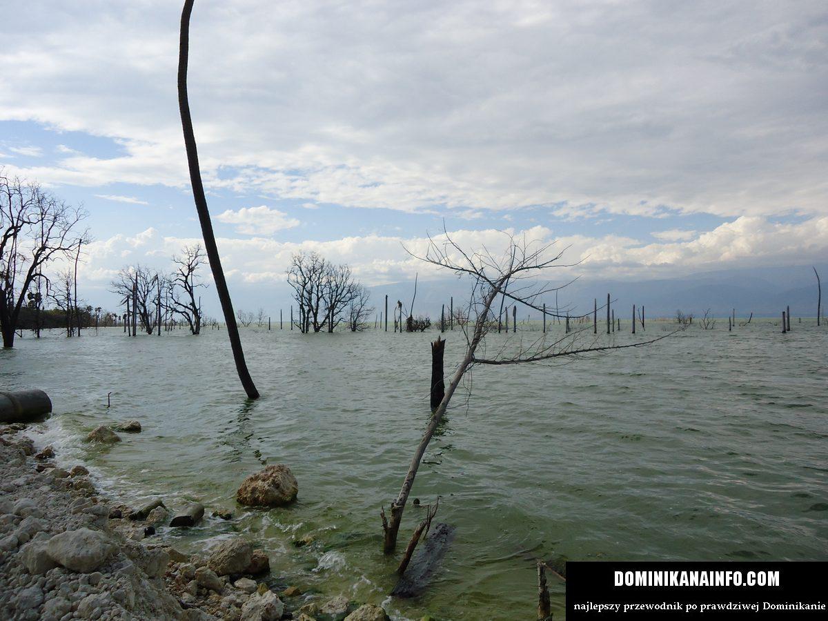 Jezioro Enriquillo Dominikana