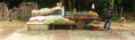 Dominikana sprzedawca owoców
